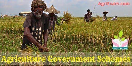 National Agriculture Market