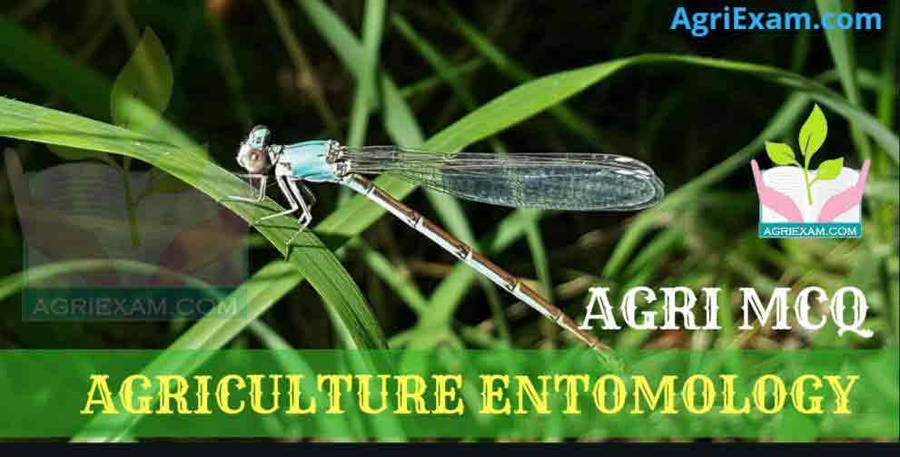 Agricultural Entomology MCQ